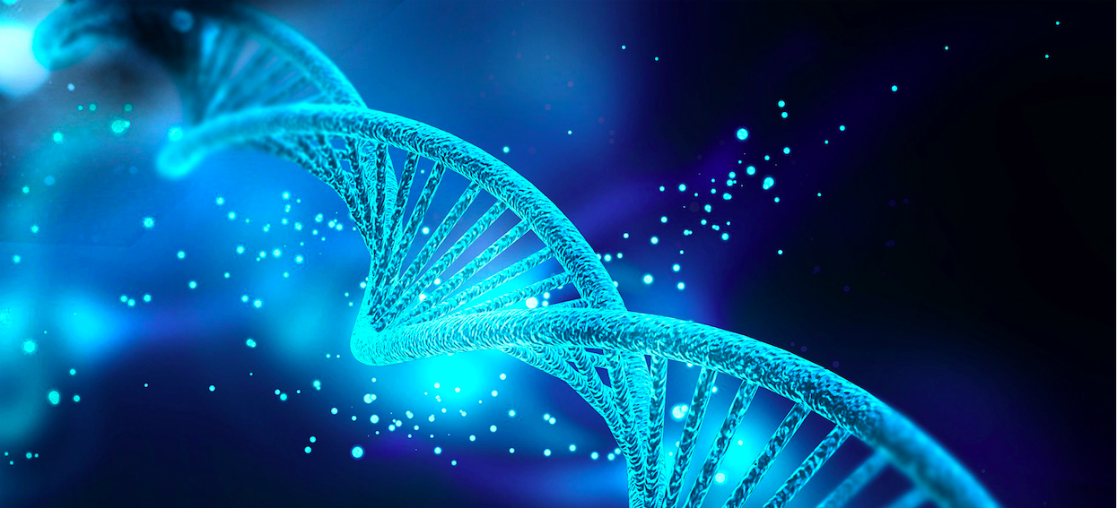 Storing data in a DNA strand